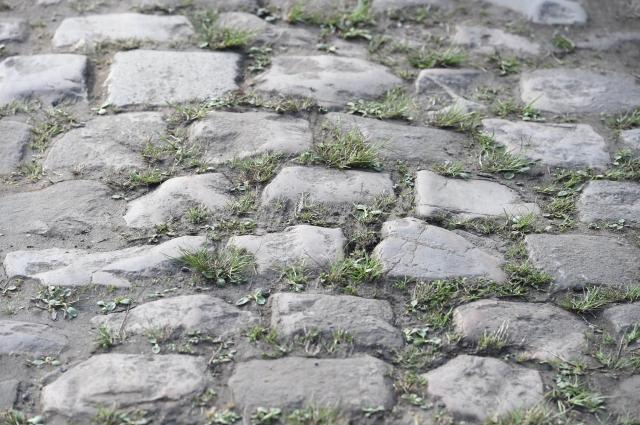 Roubaix: Zvezdice