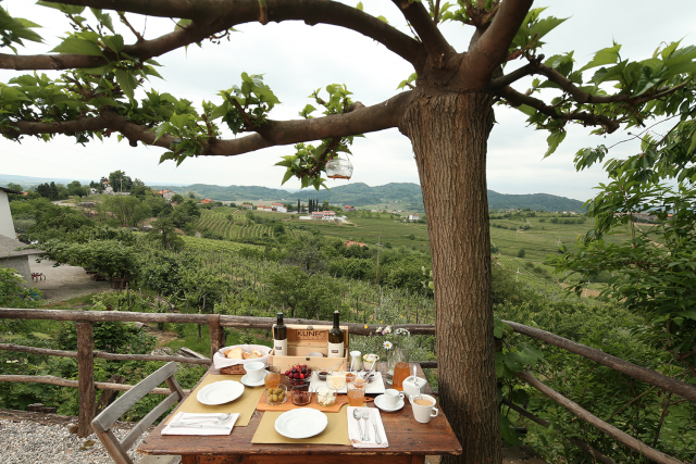Italijanski vodič Slow Wine med najboljše vinske kleti uvrstil tudi slovenske