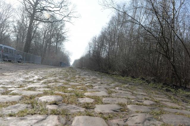 Roubaix: Tudi kolesa posebej nagrajena