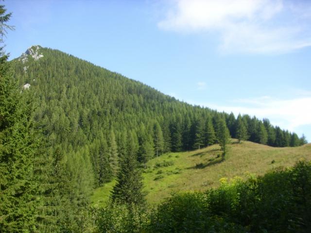 Goli vrh (1787 m) iz doline Ravenske Kočne