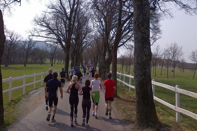 Mali kraški maraton