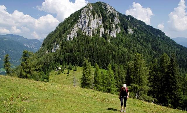 Lepenatka (1425 m) in Veliki Rogatec (1558 m) iz Leške gmajne