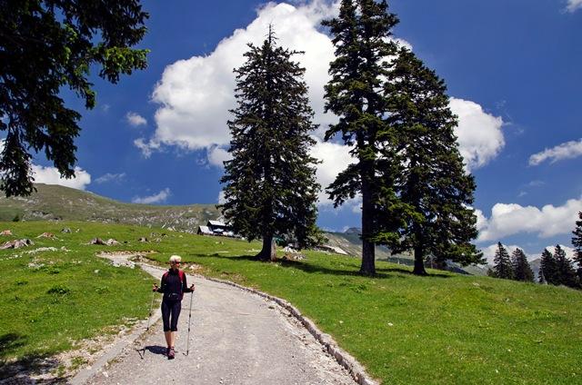 Planina Kofce (1488 m) od Matizovca
