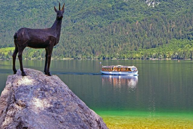 Okoli Bohinjskega jezera