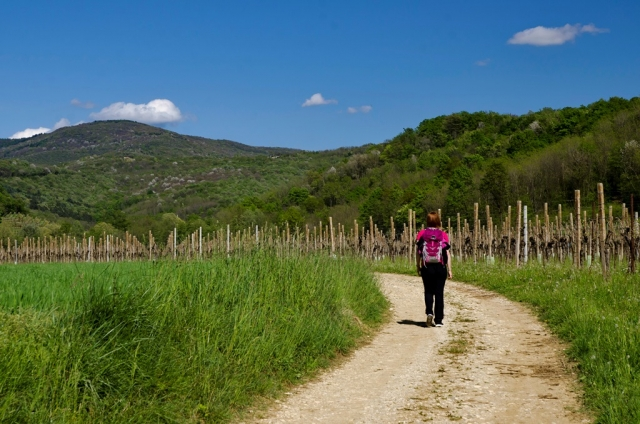 Alpe Adria Trail, etapa 29: Čedad–Breg pri Golem Brdu