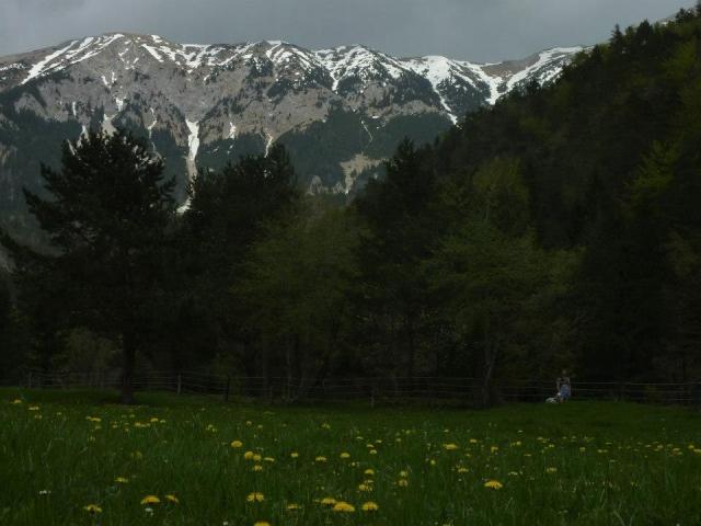 Mimo Valvazorjevega doma (1181m) do Potoške planine (1270m)