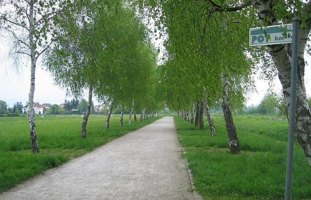 Tek okoli Ljubljane po PST